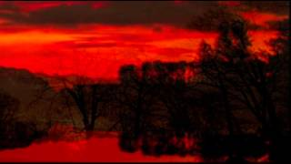 WONDERLAND BY NIGHT (WUNDERLAND BEI NACHT)- RAY DAVIS