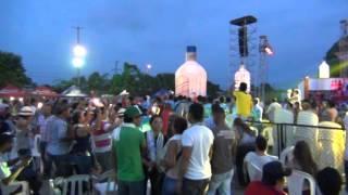 CONCIERTO DE ARBOLADA San Pelayo festival del porro