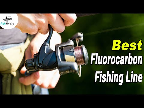 Best Fluorocarbon Fishing Line In 2020 –  Experience The Best!
