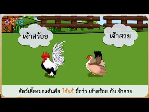 ไก่แจ้แซ่เสียง ตอนที่ 1 - สื่อการเรียนการสอน ภาษาไทย ป.2