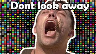 Try Not To Look Away CHALLENGE spider edition (95% will FAIL)