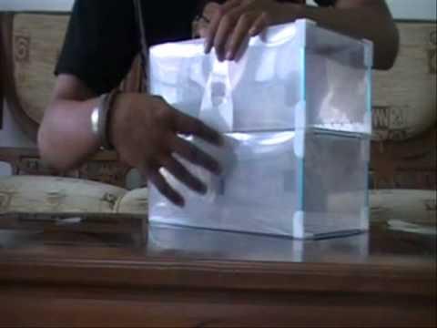 Cara Menggabungkan Transparent Shoe Box