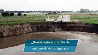 Tras un vuelo con dron y una inspección ocular del personal de la SSP, ya no aparece el can ubicado por grupos ambientalistas en el socavón de Santa María Zacatepec