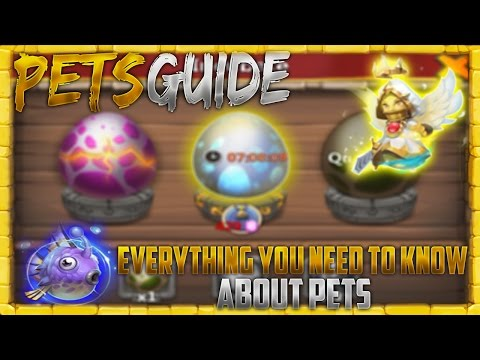 Everything You Need To Know About Pets To Get Started Castle Clash