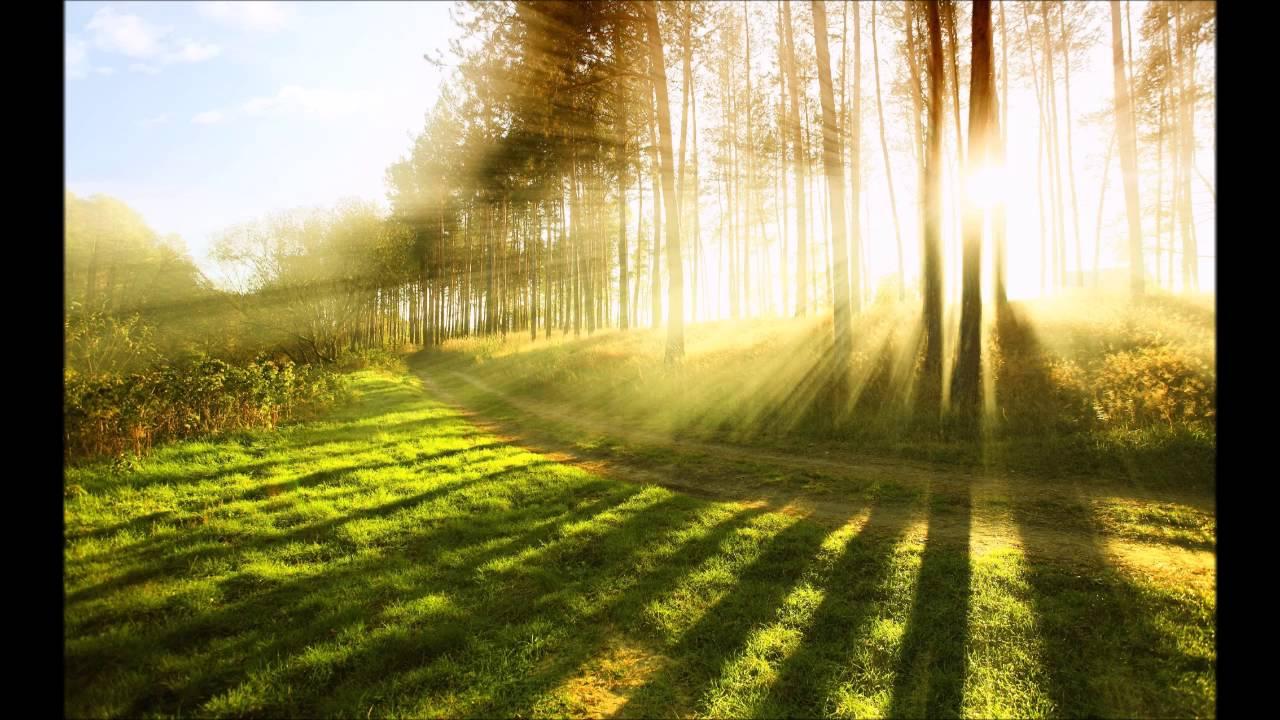 Unser Jahr Ist Kunterbunt Lieder Reime Geschichten Christliche
