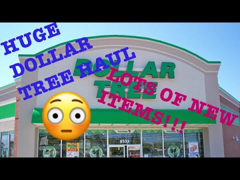 Dollar Tree Haul 💥 Extreme--Over $100! 💥July 21, 2017