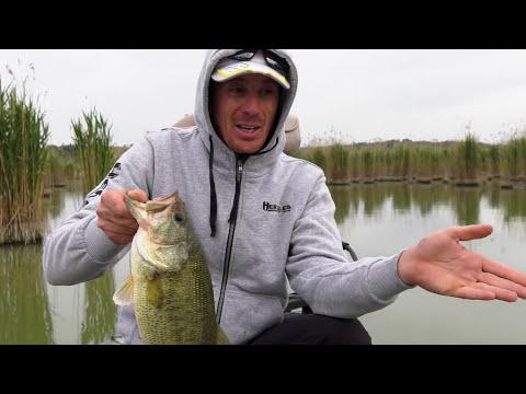 Bassfishing a Montepulciano