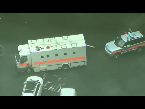 London Police SEG escorting prisoner transport - view from the sky [UK | 15.4.2016]