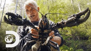 Jeremy Wade Finds Giant Crayfish | Jeremy Wade's Dark Waters