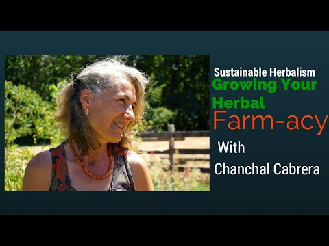 Growing your Herbal Farm-acy | with Chanchal Cabrera  /Island Soul Films