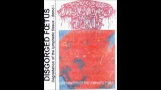 DISGORGED FŒTUS - Degradation Of The Lymphatic Tissue - Demo I