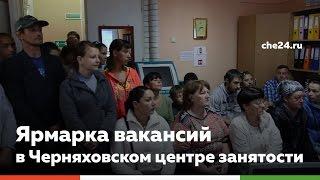 Ярмарка вакансий в Черняховском Центре занятости(, 2015-07-14T12:26:19.000Z)