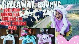 Pengumuman Paket Giveaway di Kandang Sapi | Jam IMOO Watchphone Smartwatch | Bunny Hat | Squishy Lol
