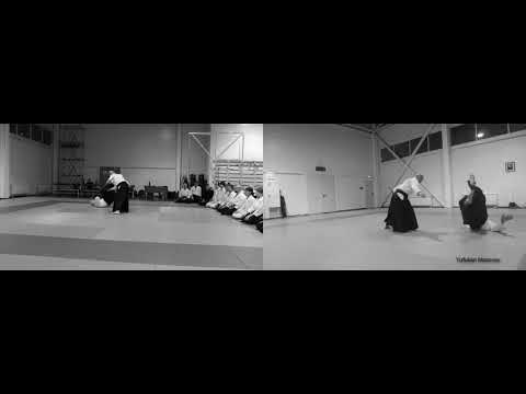 Aikido seminar. Takashi Kuroki. Moscow, 03/2019