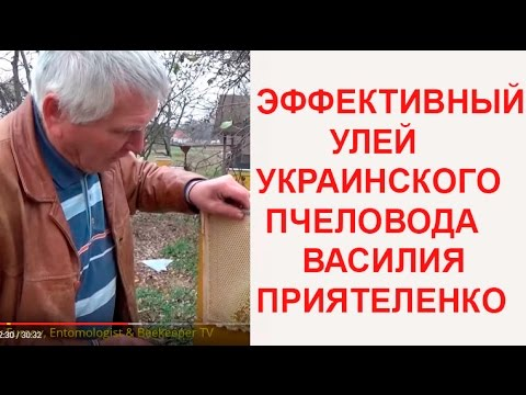 Эффективные Инновационные Ульи Украинского Пчеловода Василия Приятеленко 06.11.2016 (ПОЛНОЕ)