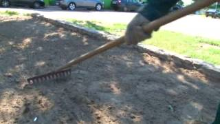видео Где рулонный газон