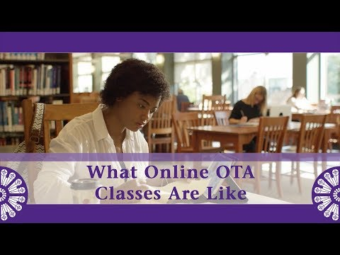 what-online-classes-are-like-in-our-online-ota-program