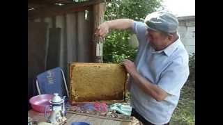 Цветочный майский мед(http://raschitaxmetov.ru/o-pchelovodstve/otkachka-i-pererabotka-pchelinogo-meda/Потребность в меде испытывает каждая семья. Несмотря на все..., 2012-06-02T12:21:40.000Z)