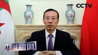 [中国新闻] 中国驻阿尔及利亚使馆:中阿抗疫合作紧密有效 | 新冠肺炎疫情报道