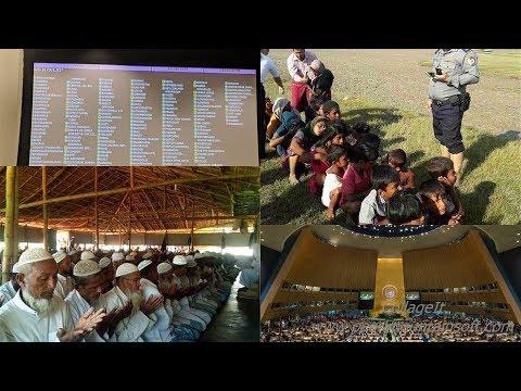 APN Daily Rohingya News Today 17 November 2018 ,Saturday