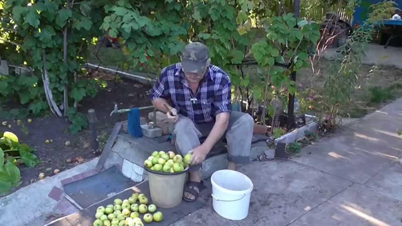 Как мариновать яблоки