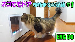 A record of conquering the anywhere cat door  #1  BossKichi's first encounter!【Eng CC】