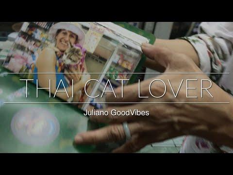Thai Cat lover