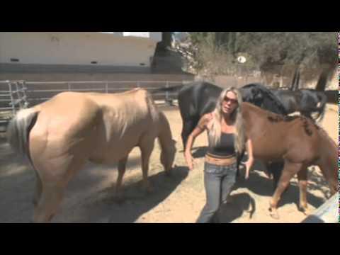 Candi  Cane Cooper  Animal Communicator