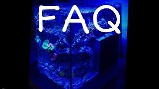 Live questions réponses acte 10 thumbnail