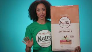 NUTRO Wholesome Essentials Dry Dog Food