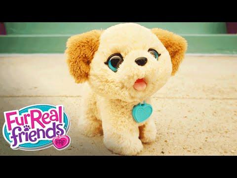 Furreal Friends Playful Pup Commercial Doovi