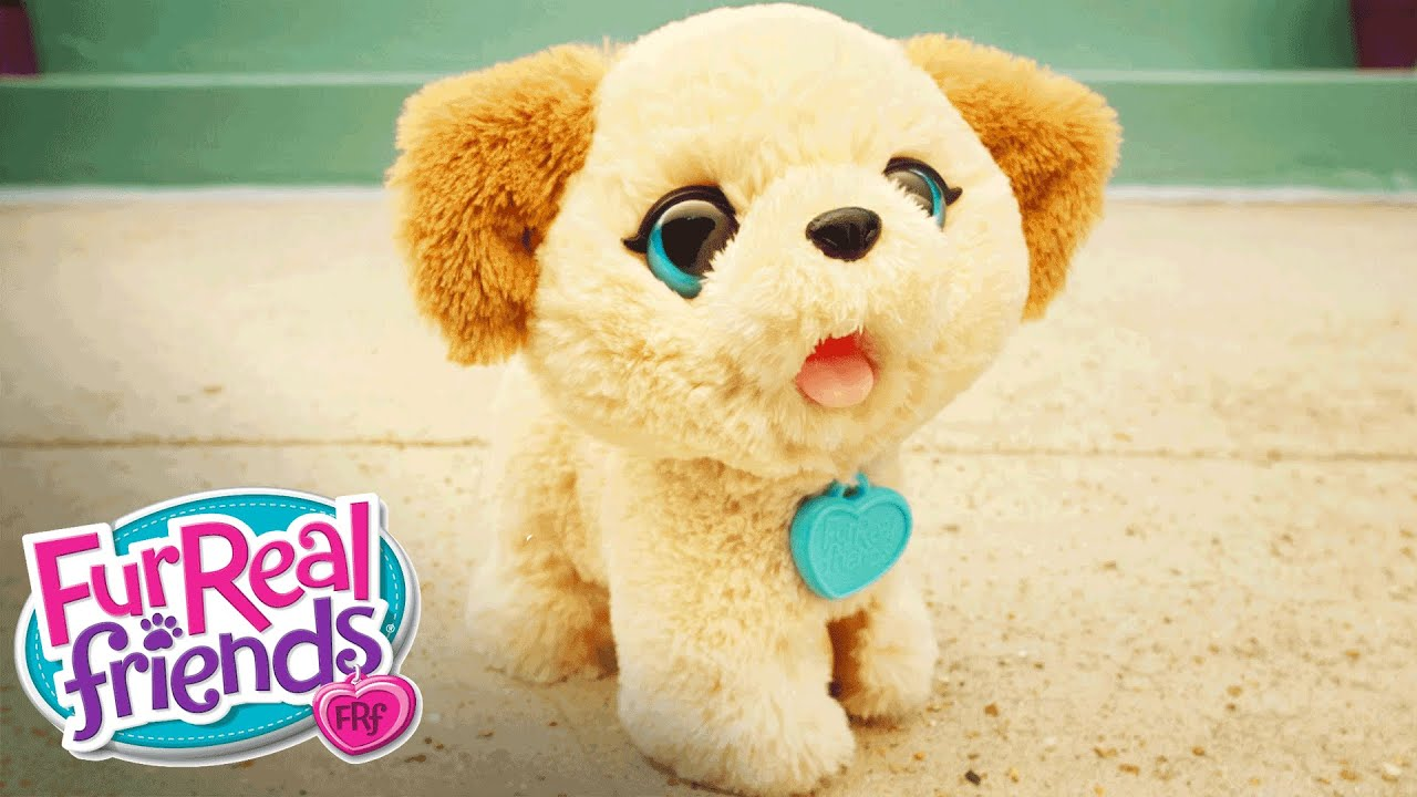 FurReal Friends Toys – Pax My Poopin Pup Cute Poop to the Max