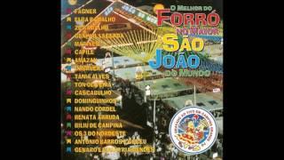 Baixar CD O MELHOR DO FORRÓ NO MAIOR SÃO JOÃO DO MUNDO - AO VIVO [2000] (OBRIGADO PELOS 500 INSCRITOS!)