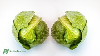 Download Video Benefits of Cabbage Leaves for Relief of Engorged Breasts MP3 3GP MP4