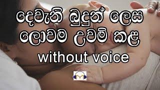 Dewani Budun Lesa Karaoke (without voice) දෙවැනි බුදුන් ලෙස ලොවම උවම් කළ