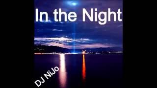 DJ NiJo - First Dub