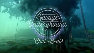 Chill Beats X Aquarium - Nosaj Thing