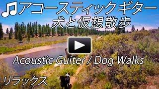 アコースティック ギター インストゥルメンタル仮想ウォーキング ツアー...