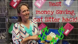 💰 Best money saving cat litter hack! 💰