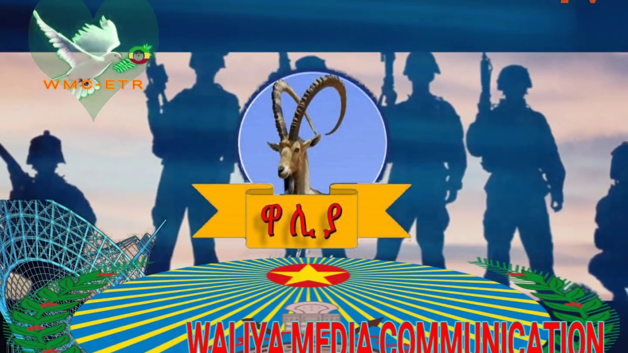 voe waliya media COMMUNICATION ethiopian NEW YEAR 2010 PRO WMC-ETR
