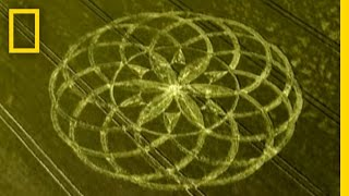 Crop Circle Mystery | National Geographic