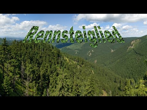 Rennsteiglied - Natur - Cover - Yamaha - PSR E313 - Keyboard - Lyrics - Karaoke
