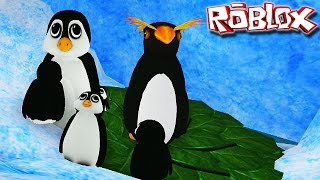 "Penguin Simulator ""Roblox"" (Gameplay/PT-BR)-Penguin Family"