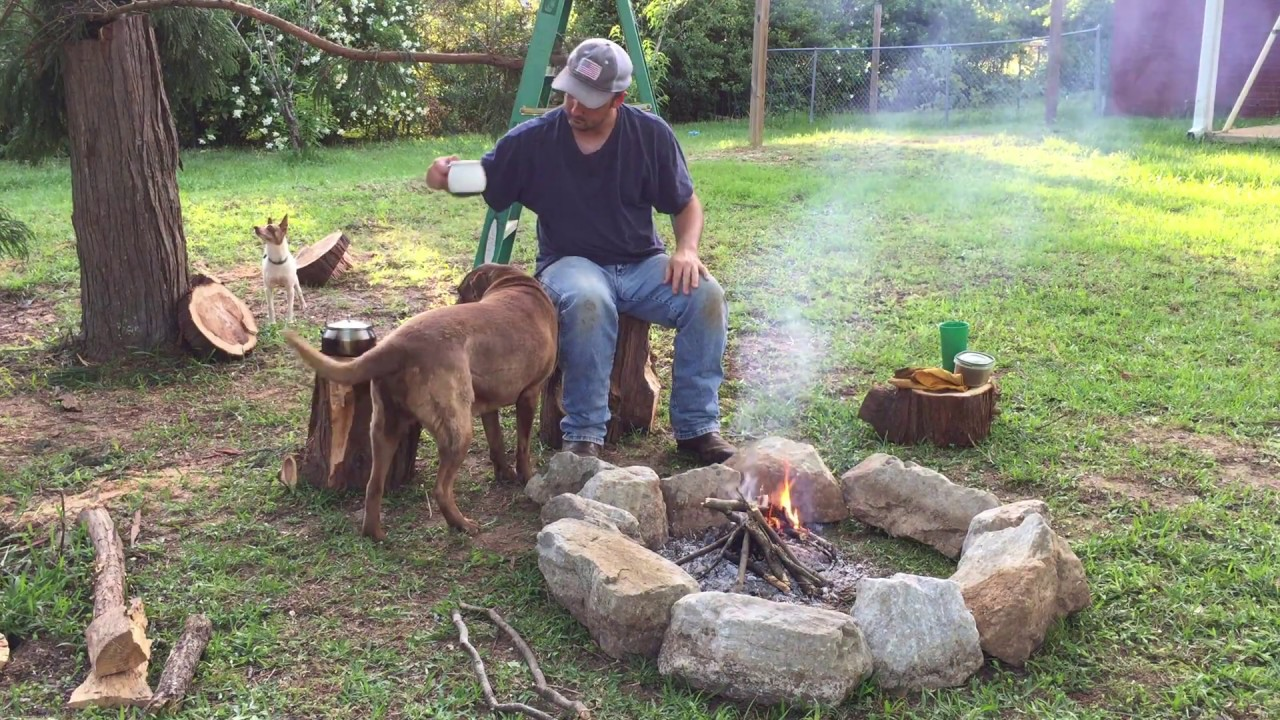 Simple Stone Fire Pit Ring Baby Blue Jays Survived A Tree Fall