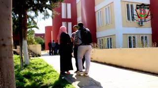 La drague en Algérie