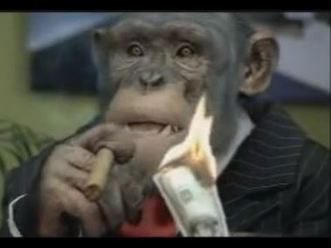 CareerBuilder.com: Monkey Business (full Compilation)