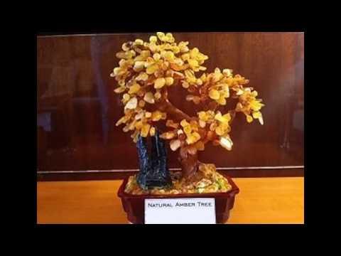 Янтарное дерево.