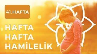 Gebelikte 41.Hafta | Hafta Hafta Hamilelik - Şebboy.com - Op.Dr. Cevahir Tekcan