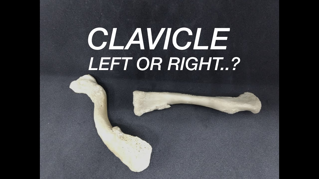 hight resolution of clavicle side determination