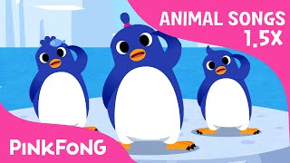 FASTER Version of The Penguin Dance | Faster and Faster | Animal Songs | PINKFONG Songs for Children